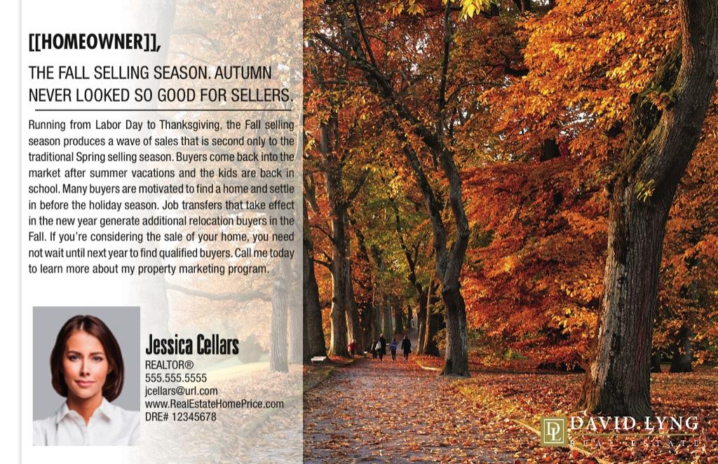Corefact Series - Local Expert - Fall Season