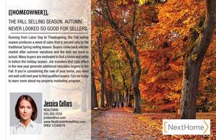 Corefact Local Expert - Fall Season