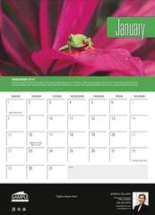 Corefact Wall Calendar - Colors 2017